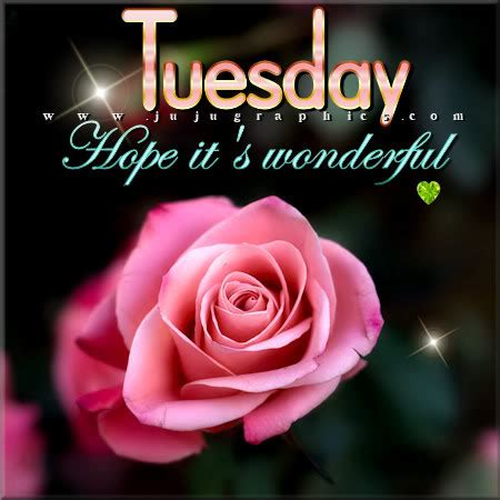 tuesday hope  wonderful  graphics quotes comments images   myspace
