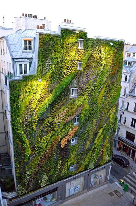 green garden walls 25 best ideas about vertical gardens on wall gardens vertical garden diy and