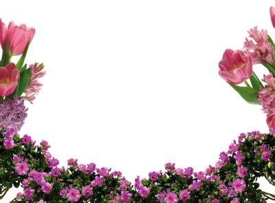 imagenes png de flores marcospng fotos karenliz marcos de flores png