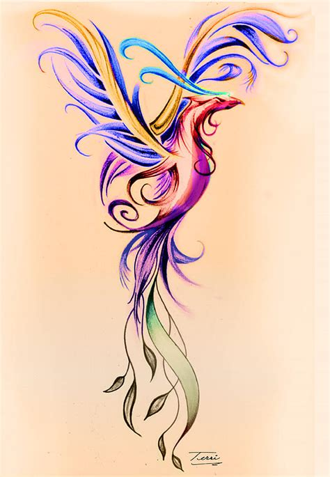 phoenix color drawing by terri meredith