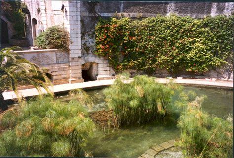 Incroyable Jardin De Babylone Paris #9: 11-papyrSyracuse.jpg