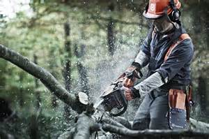 stihl chainsaw wallpaper collections