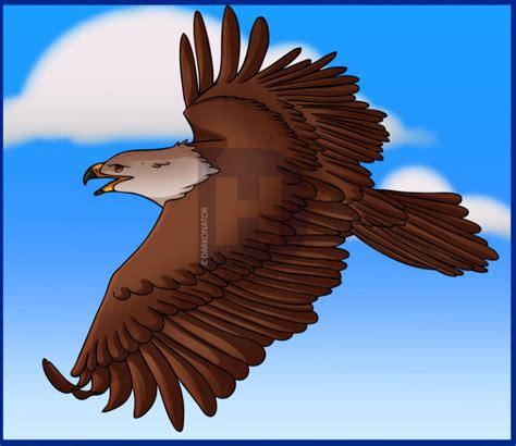 Burung Elang 3d koleksi gambar foto animasi elang terbaru 2018 sapawarga