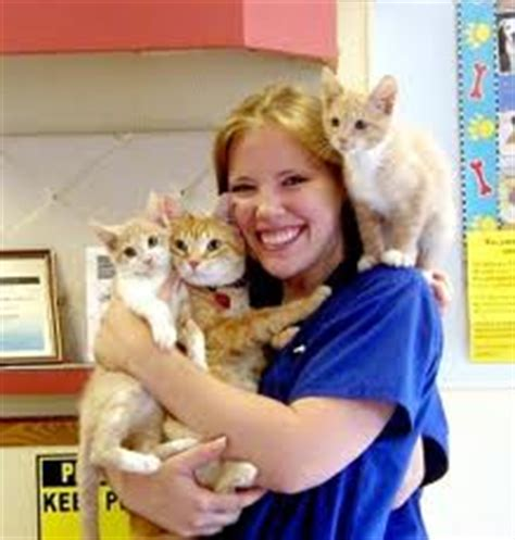 the outlook for the veterinary assistant