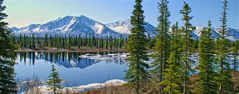 Teh Yakon alaska and the yukon featuring the yukon fairbanks and