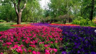 flower installation top lawn care