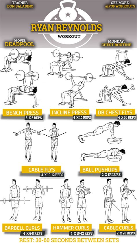 best site for workout routines chest workout routine for www imgkid the image