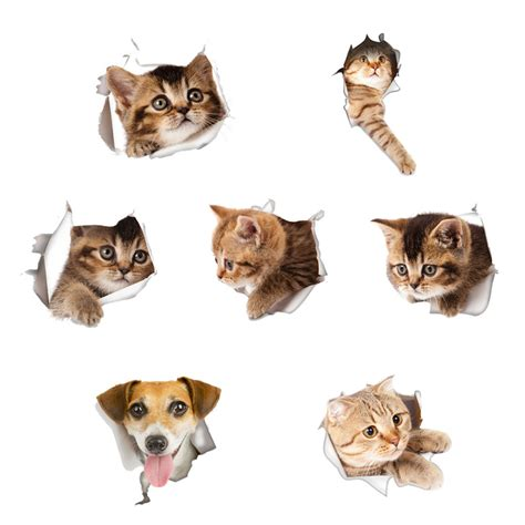 Wall Sticker Arsenal 3 3d cats wall sticker toilet stickers view dogs bathroom room decoration animal vinyl