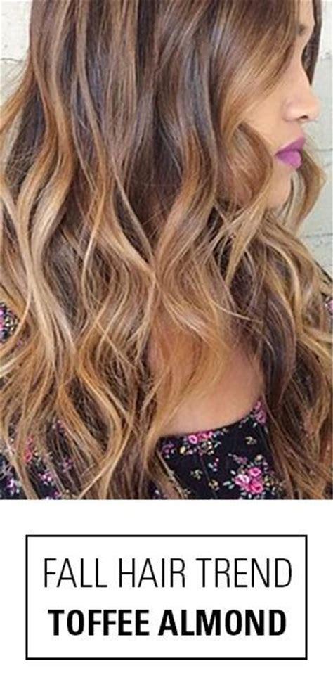 almond brown hair dye pinterest the world s catalog of ideas
