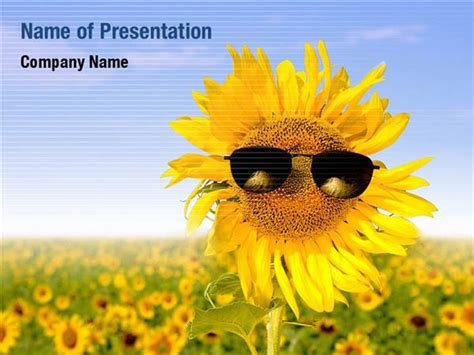 Summer Flower Powerpoint Templates Summer Flower Powerpoint Backgrounds Templates For Summer Powerpoint Template