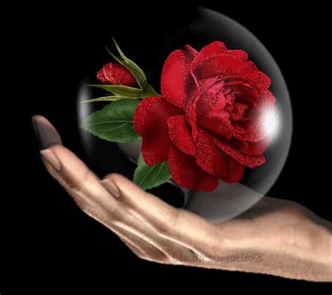 imagenes variadas movibles 174 gifs y fondos paz enla tormenta 174 gifs de rosas variadas