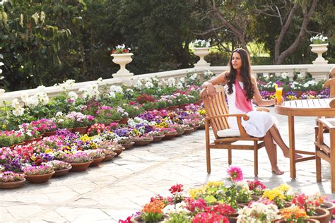 Ananda Detox Spa by Rejuvenate In The Himalayas Detox And De Stress At Ananda