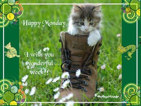 happy monday     wonderful week pictures