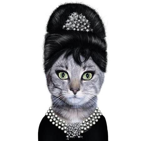 Iphone 66s Pets Rock Hepburn faces mrsbubba