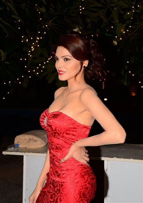 Sherlyn Dress by Sherlyn Chopra Spicy Photos In Dress