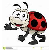 Cartoon Ladybug Photos Stock Images Cute Pictures
