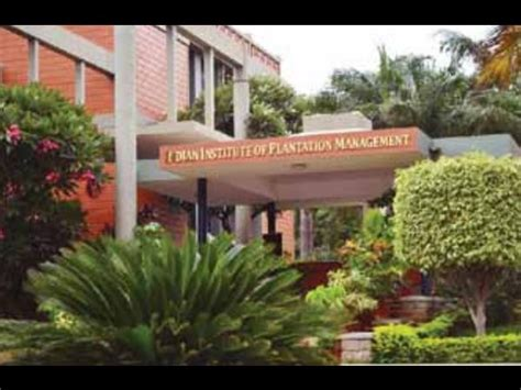 Iipm Bangalore Mba by Iipm Bangalore Offers Pgdm In Agri Business And