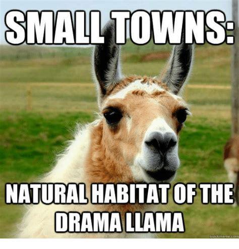 Drama Llama Meme - drama llama meme www pixshark com images galleries