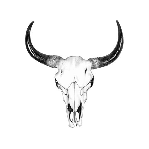 cow skull tattoo bull skull drawing by gordon tats