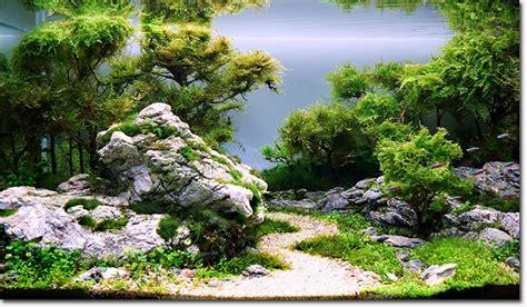 aquascape richmond underwater gardens exhibit at conservatory of flowers