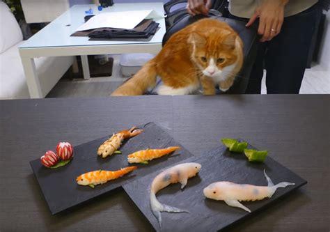 comment des sushis en forme de carpe koi