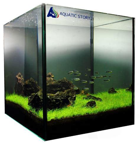 design aquascape mini 1000 images about aquascaping on pinterest mini