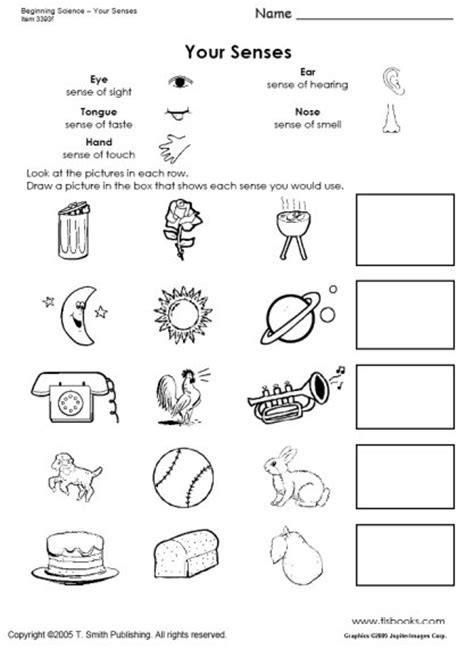 5 Senses Worksheets by Free Coloring Pages Of Pre K Senses