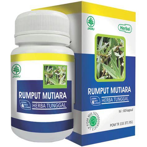 Obat Amandel Cara Herbal obat amandel tradisional alami herbal obat amandel