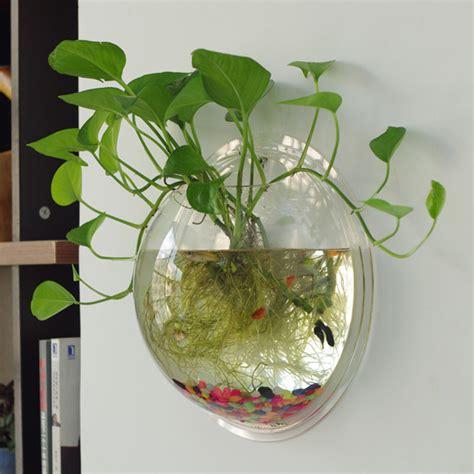 creative aquariums  tiny ideas home design