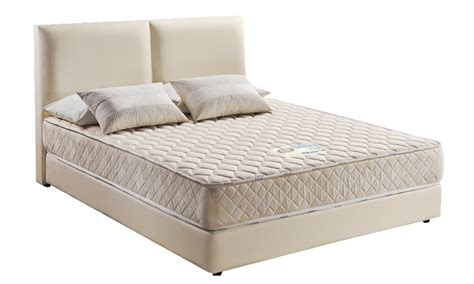 up to 52 dreamland chiro care mattress from rm499