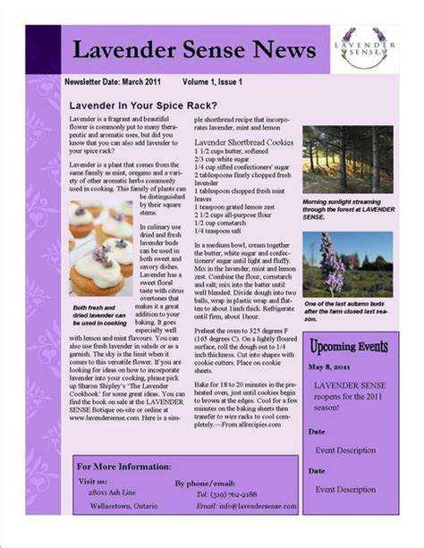 newspaper template for publisher business template