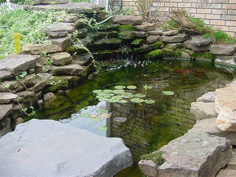 backyard fish pond ideas backyard decor tips on creating and maintaining a