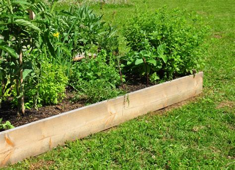 diy garden beds diy raised garden bed easy diy projects 12 backyard