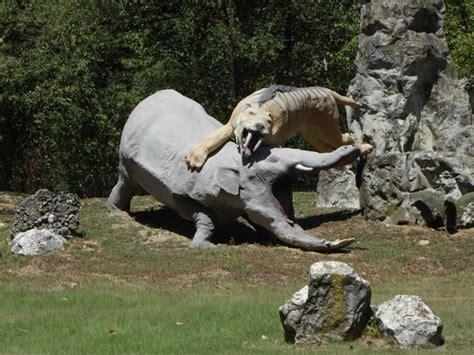 costo ingresso parco delle cornelle brontosauro foto di parco della preistoria rivolta d