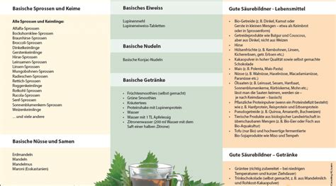 basische lebensmittel tabelle pdf saure und basische lebensmittel organic power drink
