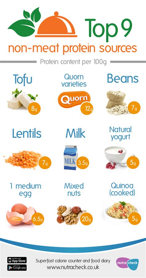 protein food sources getting protein from non sources