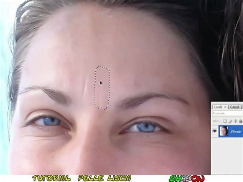 Photoshop Cs3 Smooth Skin Tutorial   tutorial photoshop cs3 smooth skin with noiseware plug