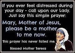 simple biography about mother teresa 17 best ideas about mother teresa life on pinterest