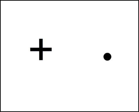 Optic Blind Spot brain post how big is your blind spot snowbrains
