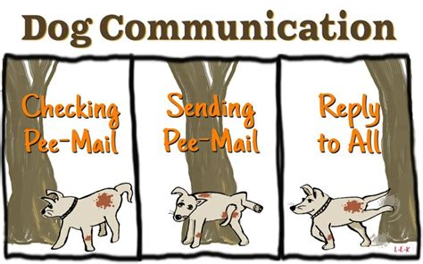 how do dogs communicate how do dogs communicate via mail couldn t resist this