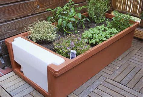 orto in terrazza come fare come fare a creare un orto sul balcone risorseinrete net