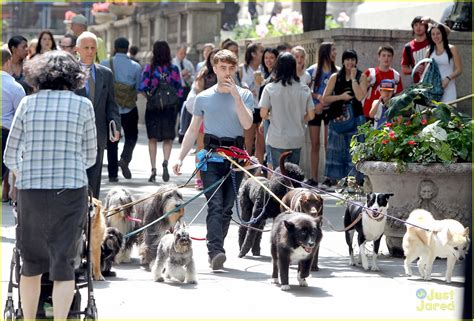 daniel radcliffe dogs daniel radcliffe walks dogs while filming trainwreck in bryant park