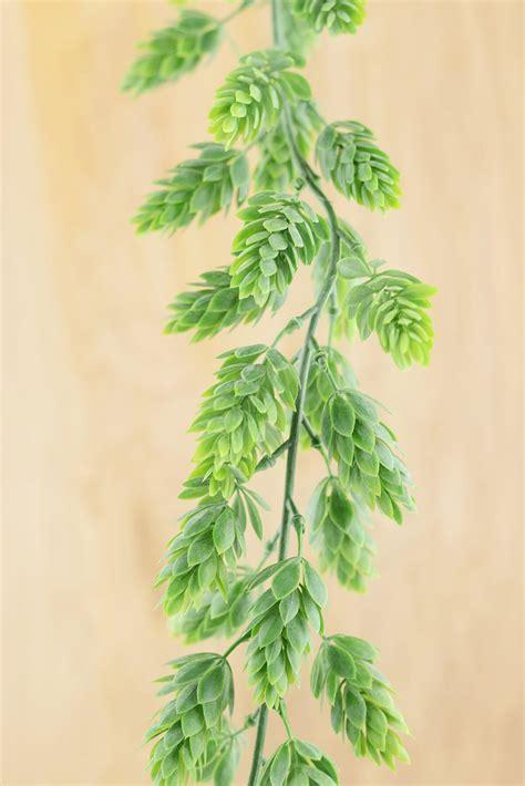 green garland hops garland frosted green 6ft artificial
