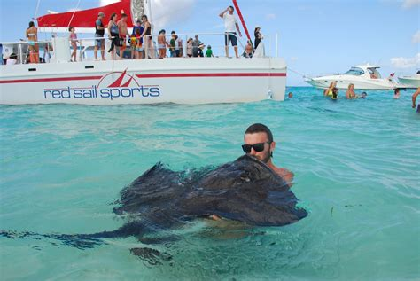 glass bottom boat tours aruba red sail sports introduces stingrays and sunset excursion