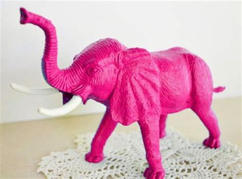 Big Pink Elephant In The Room by 17 Best Images About Pink Elephant In The Room On
