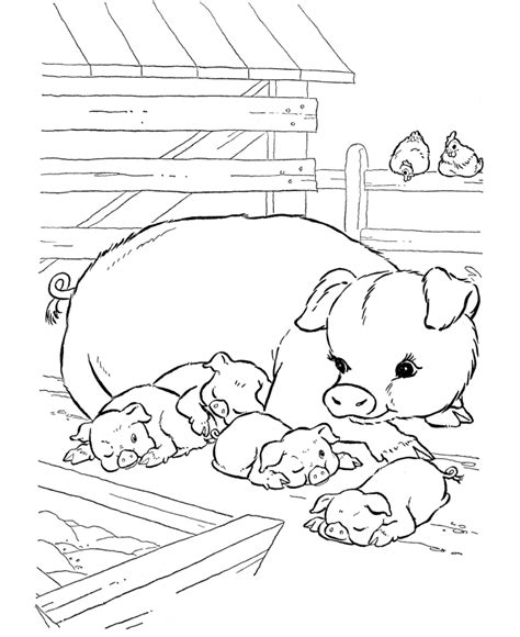 cute farm animals coloring pages cute pig coloring pages coloring home