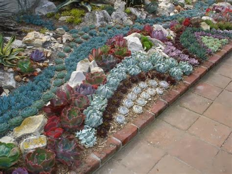 Succulent Gardens Ideas 40 Unique Succulent Gardens Great Ideas For Apartments