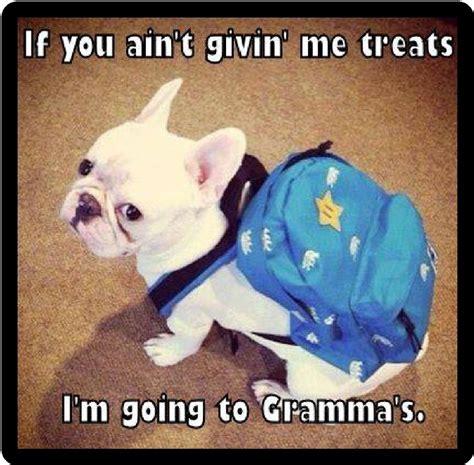 Meme French Grandmother - funny dog humor french bulldog gonna go to gramma s
