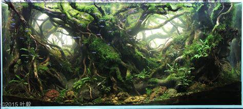 best light for planted tank best medium tech light for 40 gallon breeder the