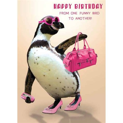 from one funny bird to another birthday card by the bhf